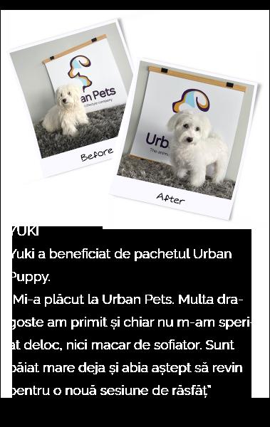 YUKI-MOBIL-URBANPETS